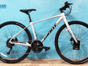 Xe đạp GIANT ESCAPE 1 màu Bạc